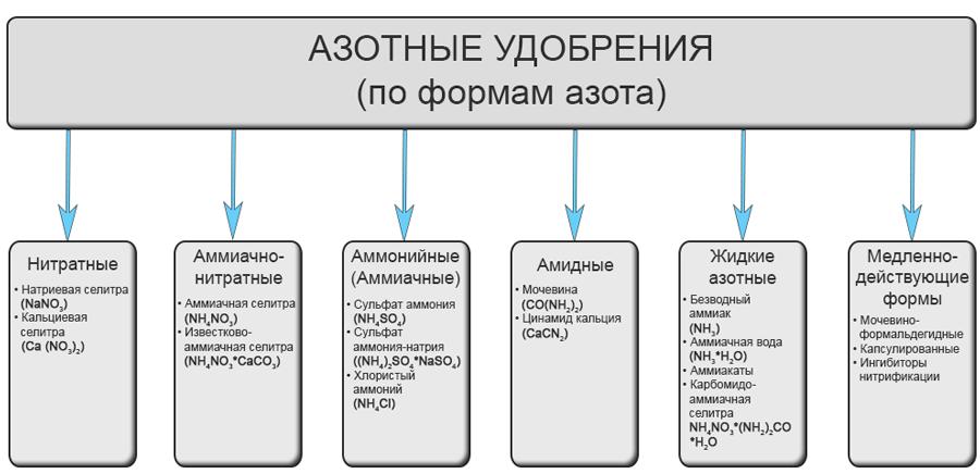 Удобрения с азотом – роль, свойства и виды, базовые правила применения