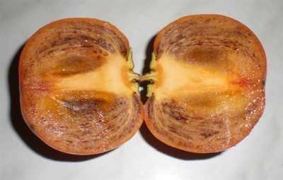 Хурма Королек: описание сорта и выращивание. Лучшие сорта хурмы. Описание вкусовых качеств. Морозостойкие сорта